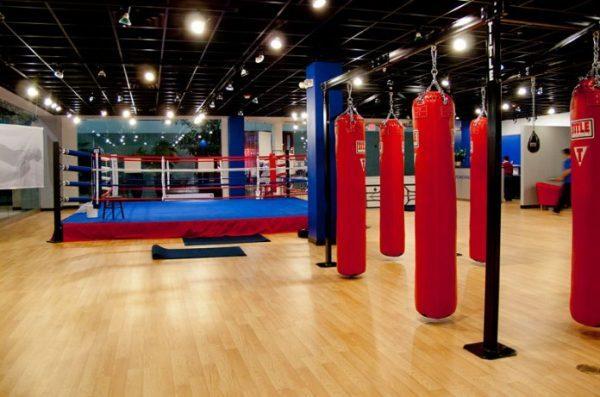 dich-vu-thiet-ke-phong-tap-boxing-chuyen-nghiep-va-tiet-kiem-chi-phi-tai-pt-fitness